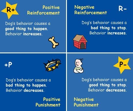 operant conditioning positive and negative reinforcement The most common types of positive reinforcement or  think of negative reinforcement as taking something  section 2: classical and operant conditioning.